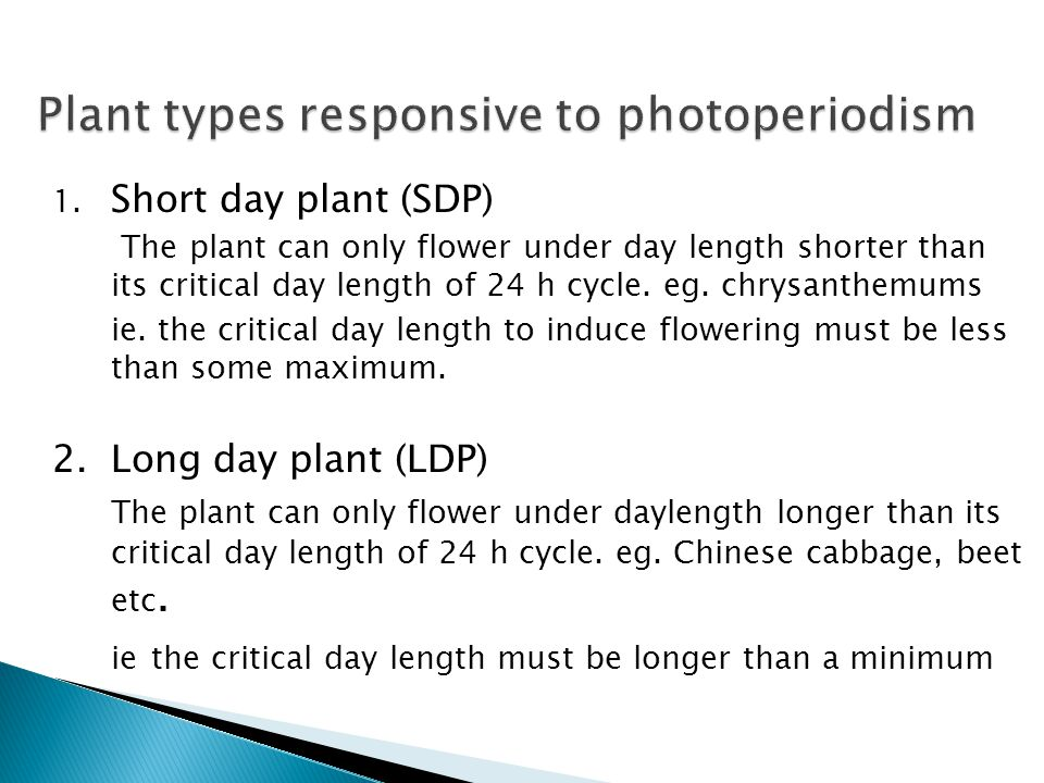 Plant types responsive to photoperiodism
