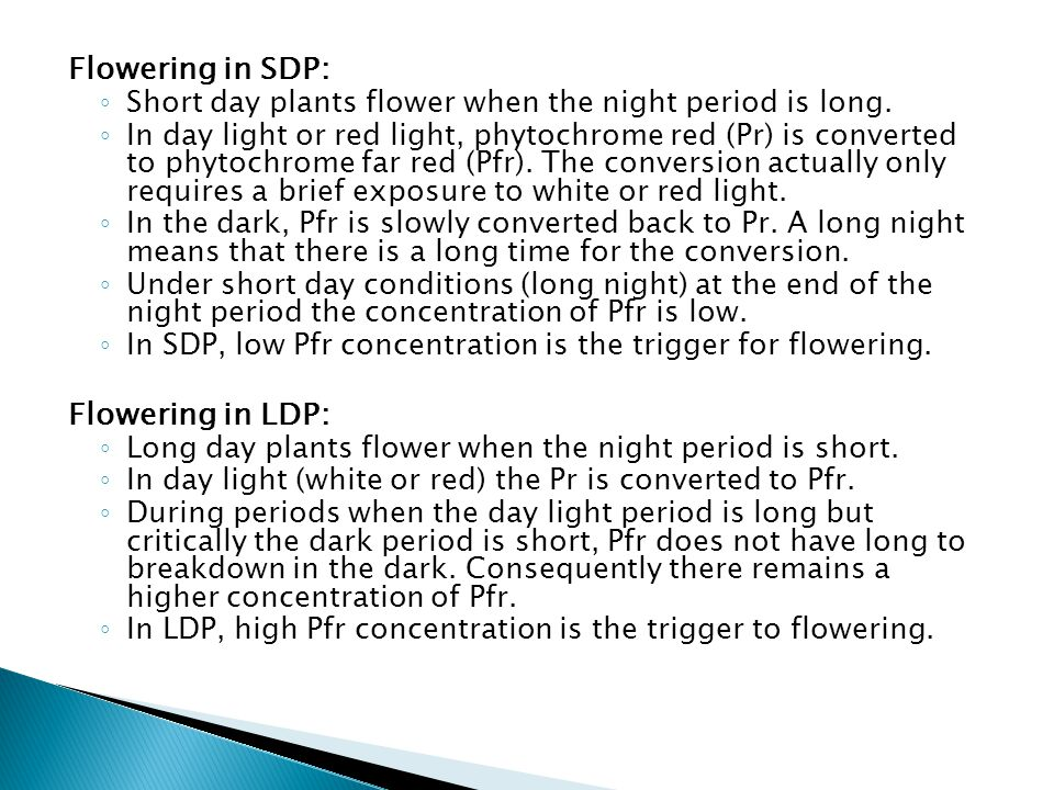 Flowering in SDP: Flowering in LDP:
