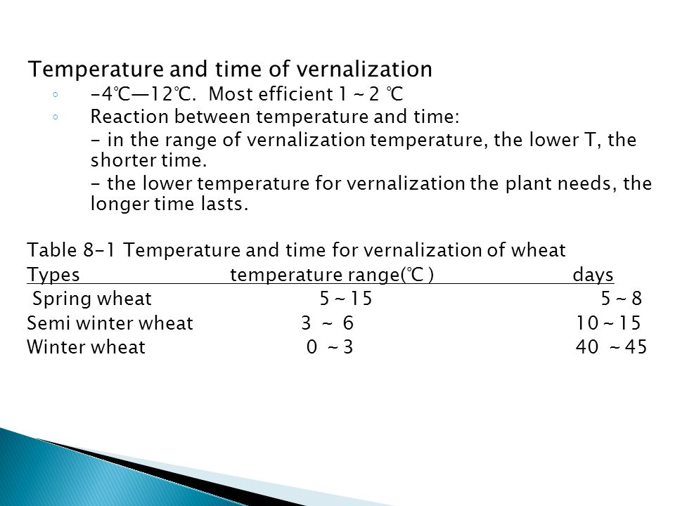 Temperature and time of vernalization