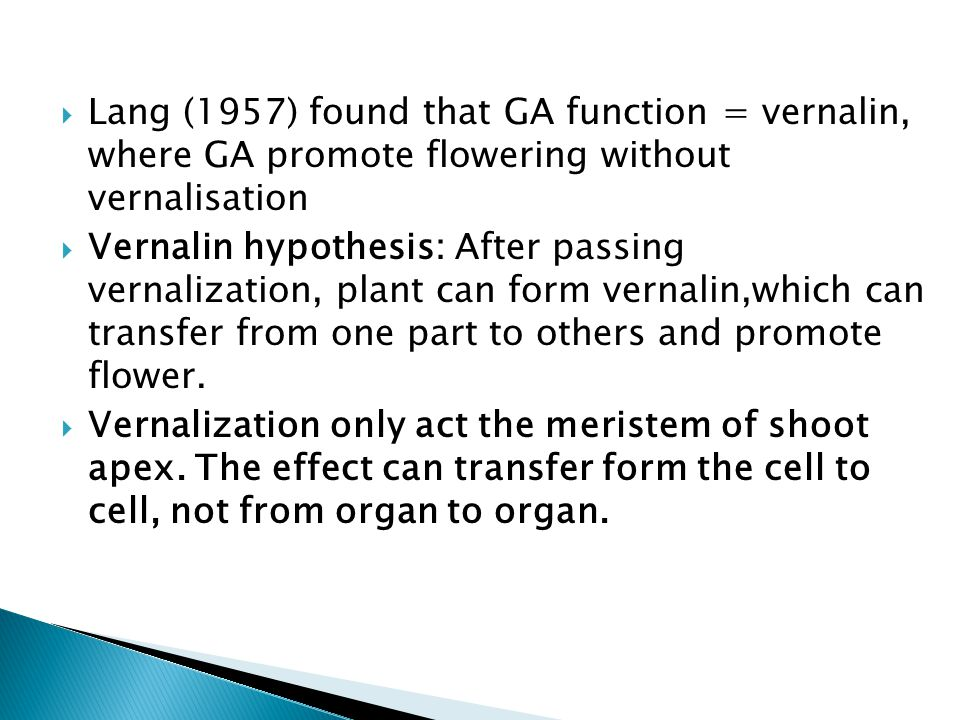 Lang (1957) found that GA function = vernalin, where GA promote flowering without vernalisation