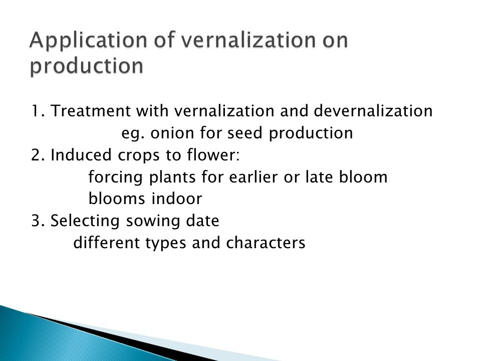 Application of vernalization on production