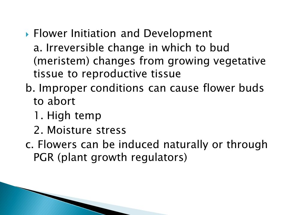 Flower Initiation and Development