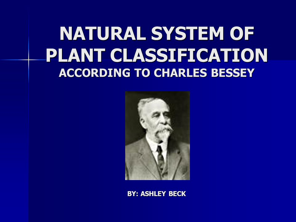 NATURAL SYSTEM OF PLANT CLASSIFICATION ACCORDING TO CHARLES BESSEY BY: ASHLEY BECK