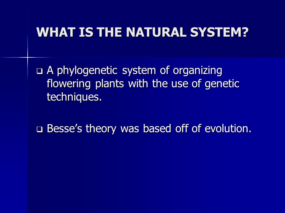 WHAT IS THE NATURAL SYSTEM