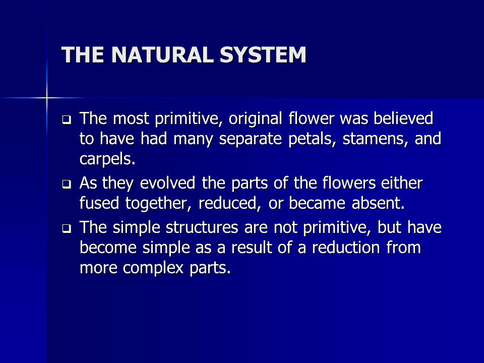 THE NATURAL SYSTEM The most primitive, original flower was believed to have had many separate petals, stamens, and carpels.
