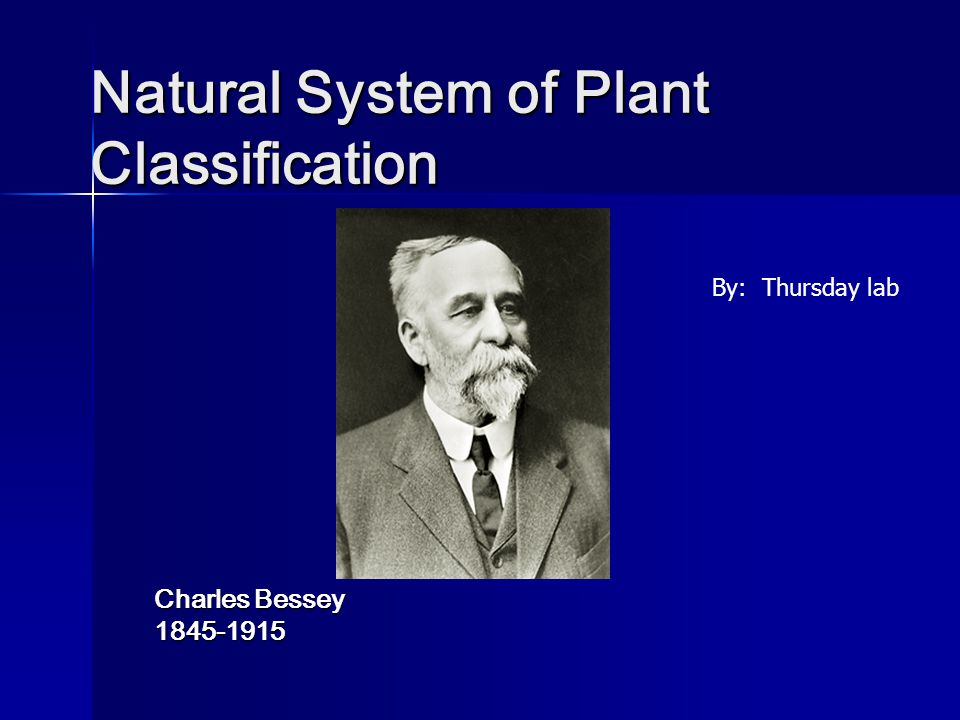 Natural System of Plant Classification