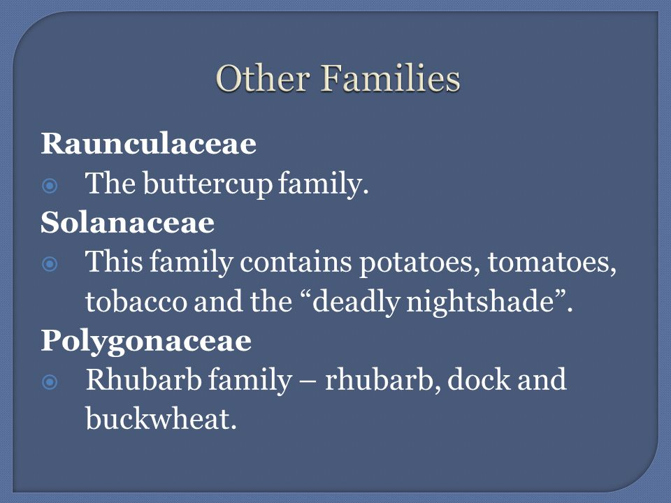 Other Families Raunculaceae The buttercup family. Solanaceae
