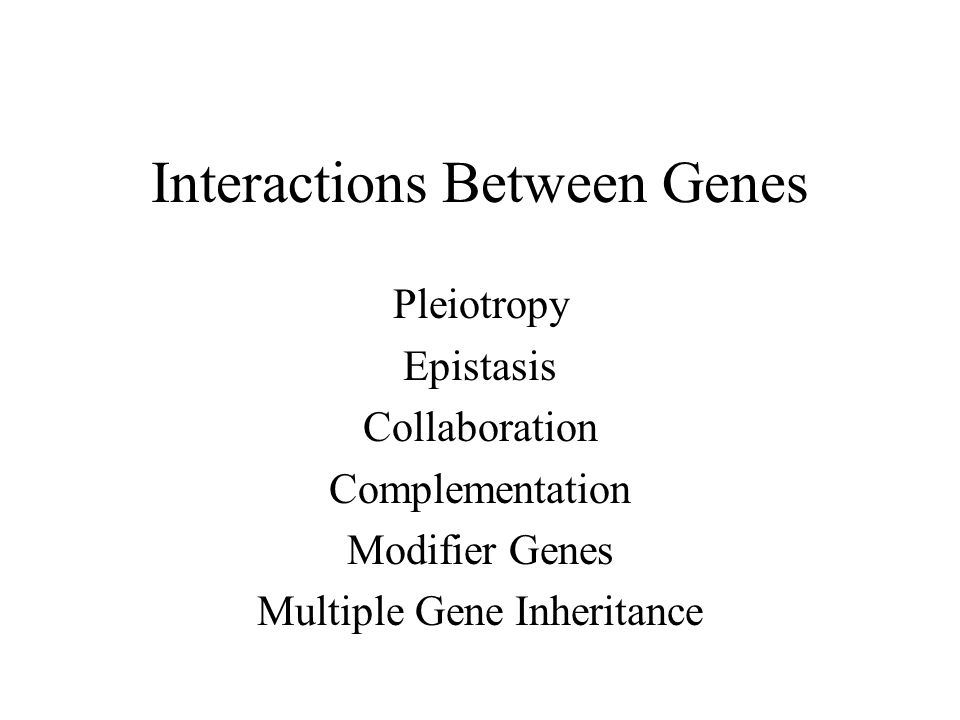 Interactions Between Genes