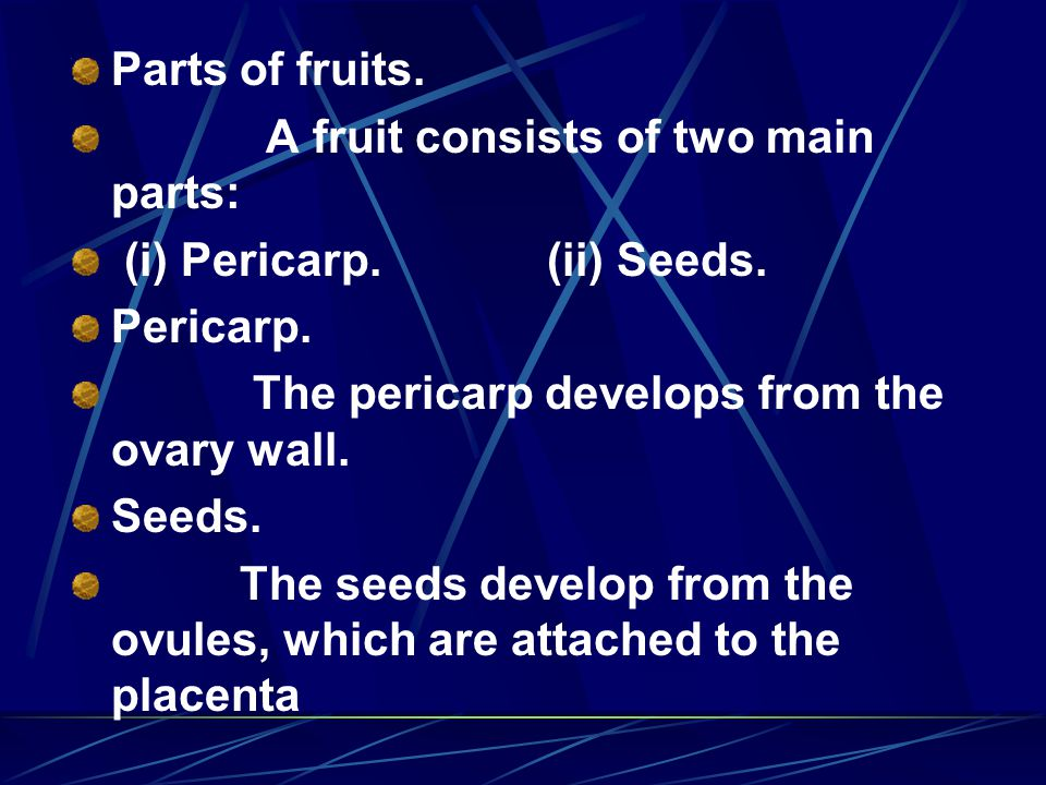 Parts of fruits. A fruit consists of two main parts: (i) Pericarp. (ii) Seeds. Pericarp.