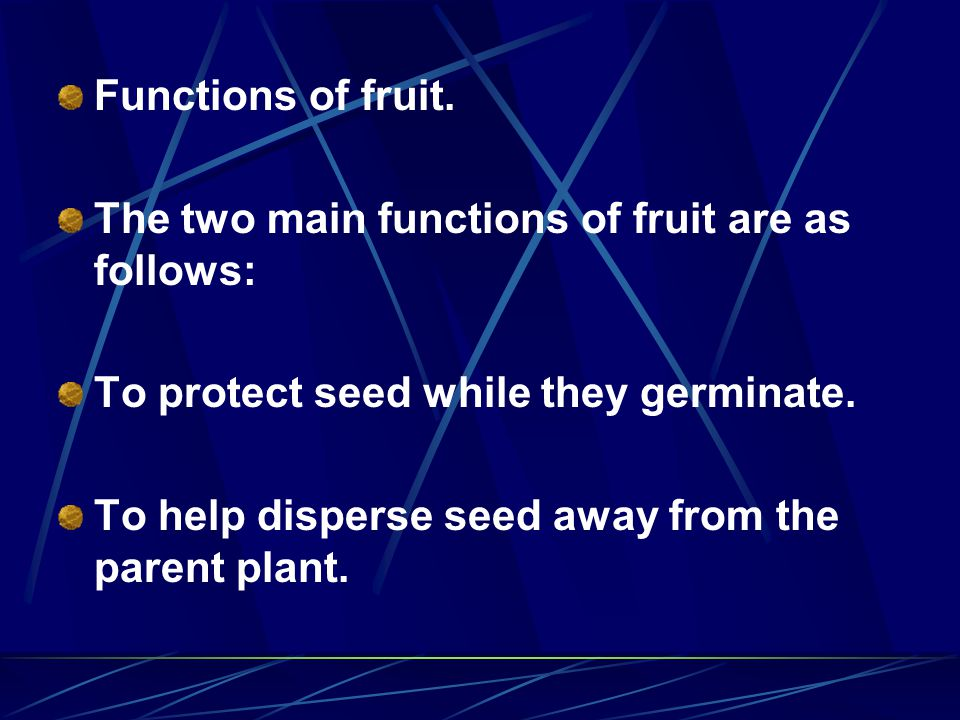Functions of fruit. The two main functions of fruit are as follows: To protect seed while they germinate.