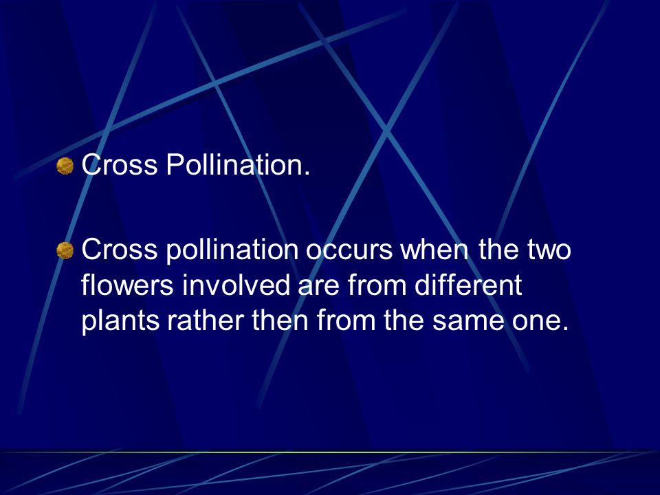 Cross Pollination.