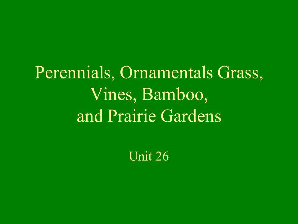 Perennials, Ornamentals Grass, Vines, Bamboo, and Prairie Gardens