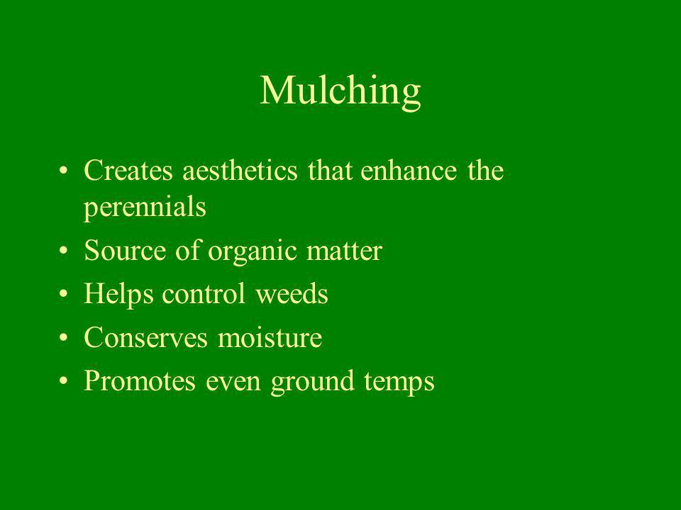 Mulching Creates aesthetics that enhance the perennials