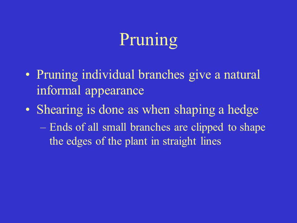 Pruning Pruning individual branches give a natural informal appearance