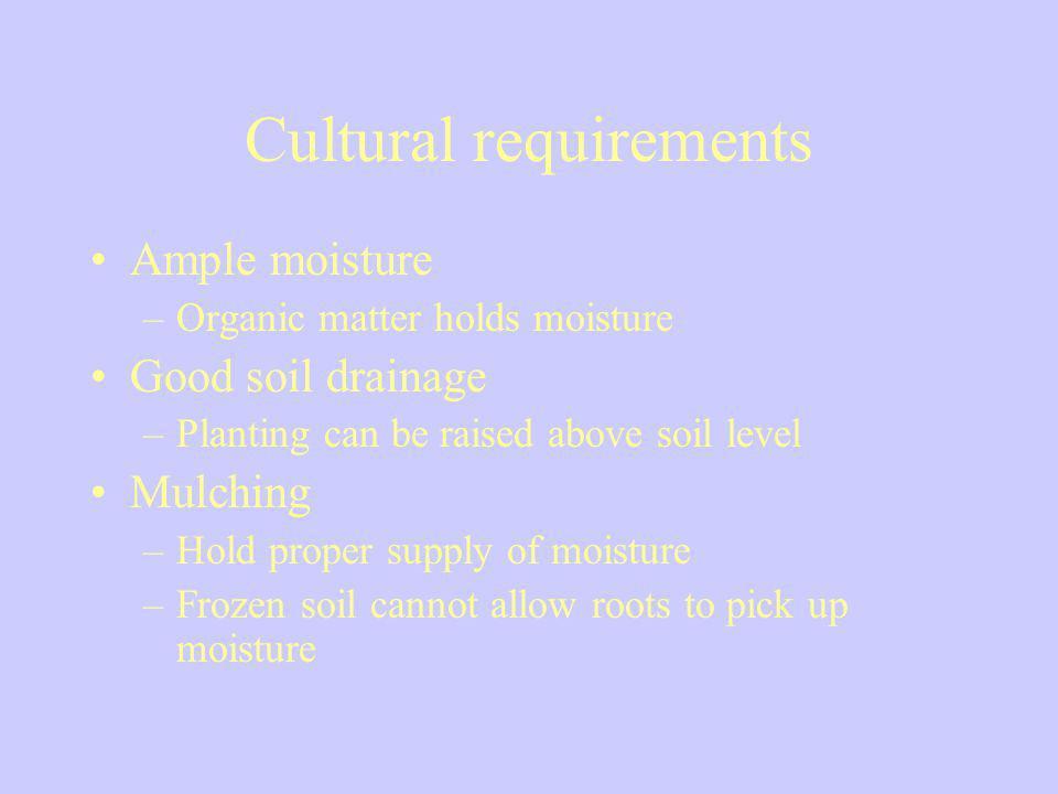 Cultural requirements
