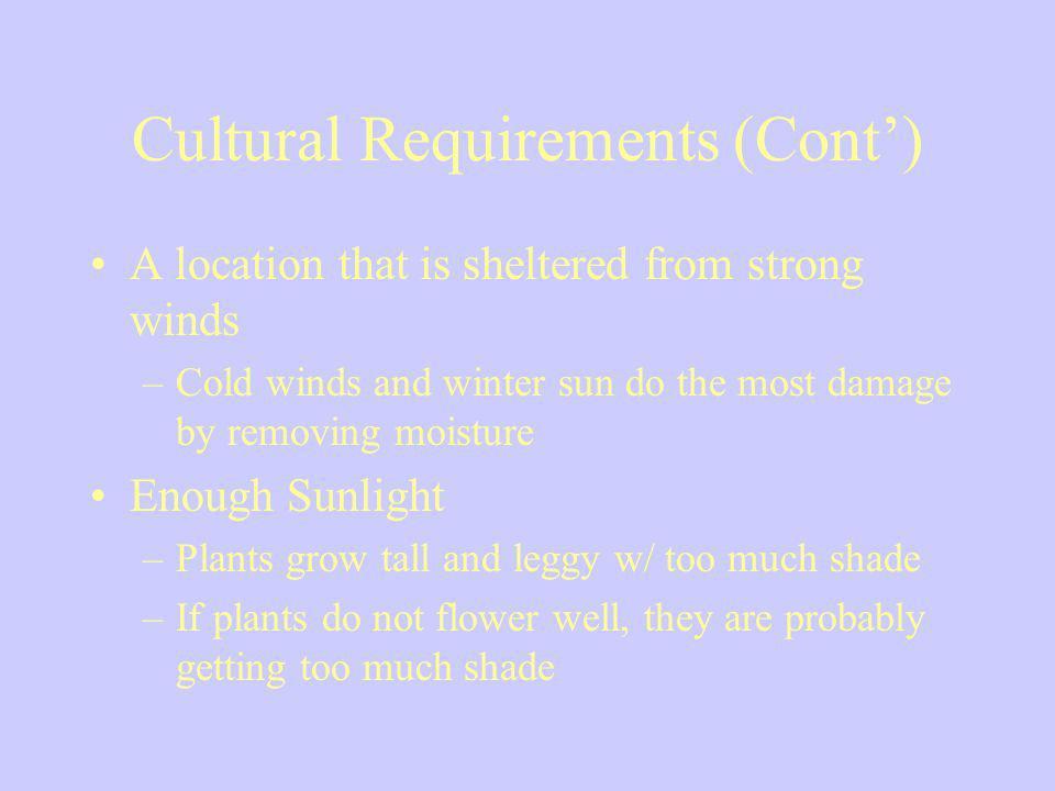 Cultural Requirements (Cont')
