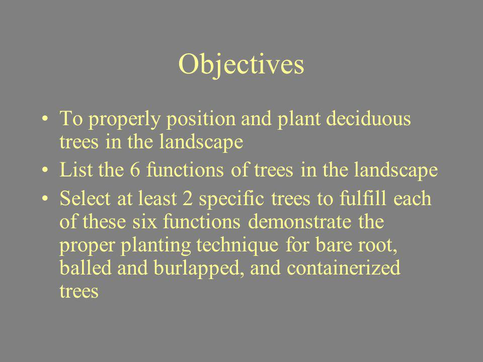 Objectives To properly position and plant deciduous trees in the landscape. List the 6 functions of trees in the landscape.