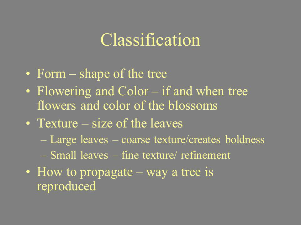 Classification Form – shape of the tree