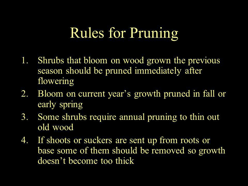 Rules for Pruning Shrubs that bloom on wood grown the previous season should be pruned immediately after flowering.