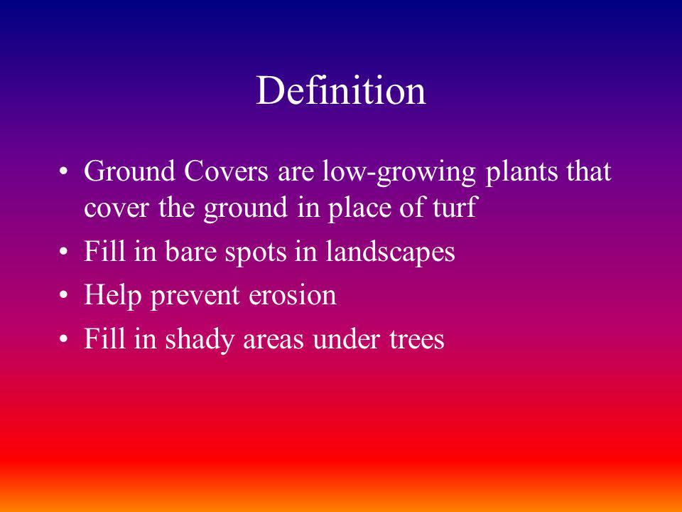 Definition Ground Covers are low-growing plants that cover the ground in place of turf. Fill in bare spots in landscapes.