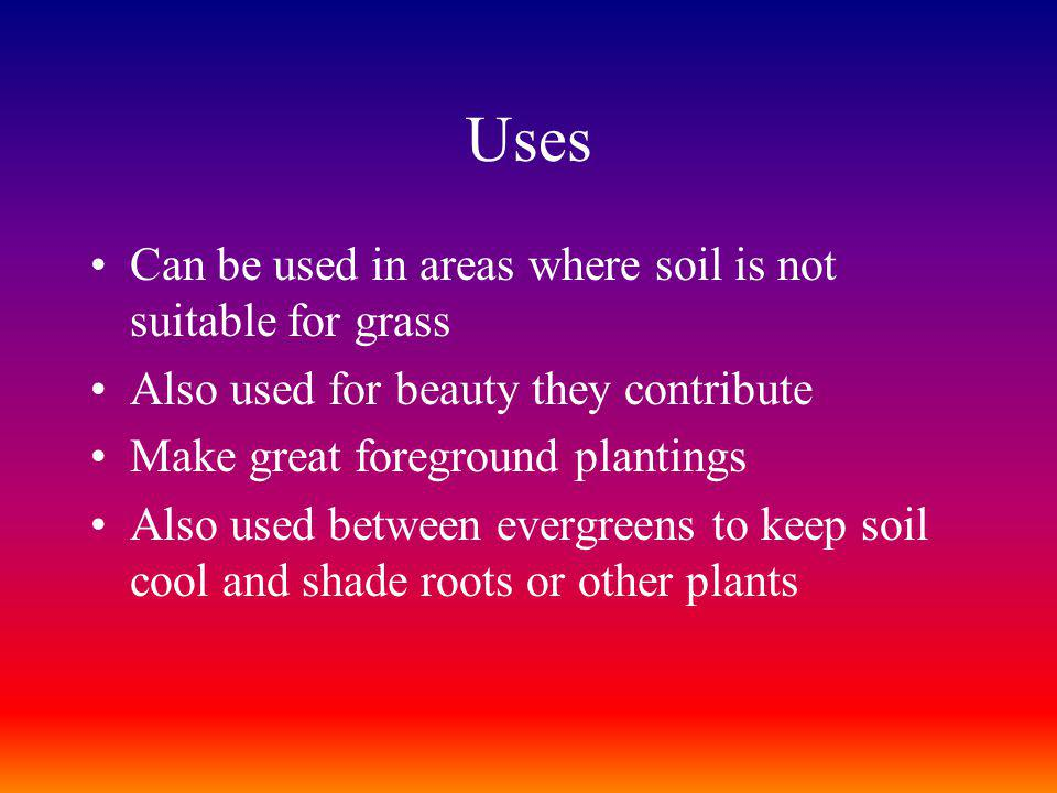Uses Can be used in areas where soil is not suitable for grass