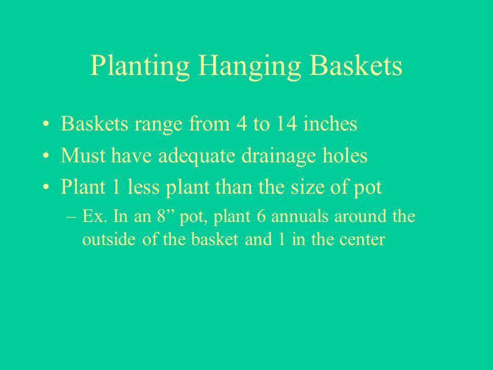 Planting Hanging Baskets