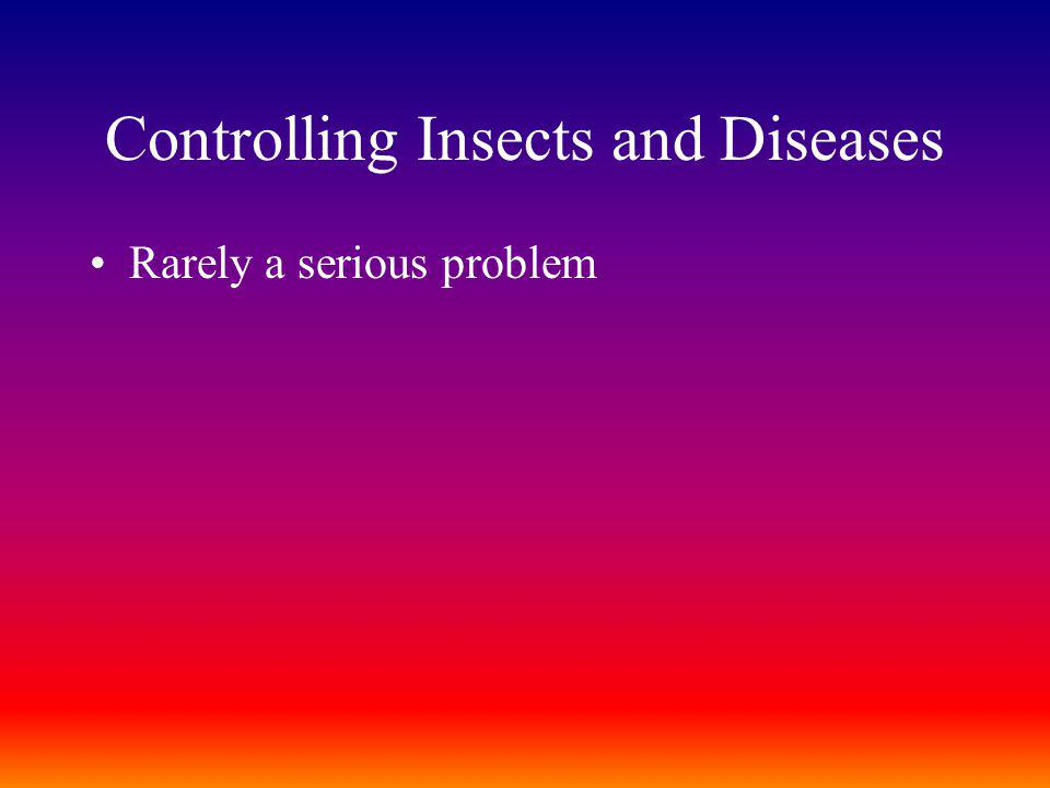 Controlling Insects and Diseases