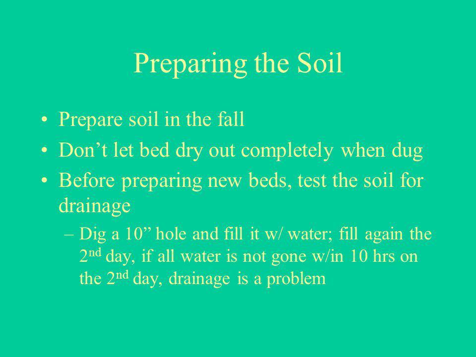 Preparing the Soil Prepare soil in the fall