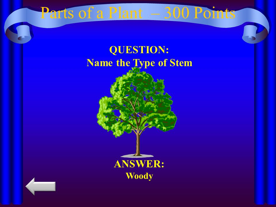Parts of a Plant – 300 Points