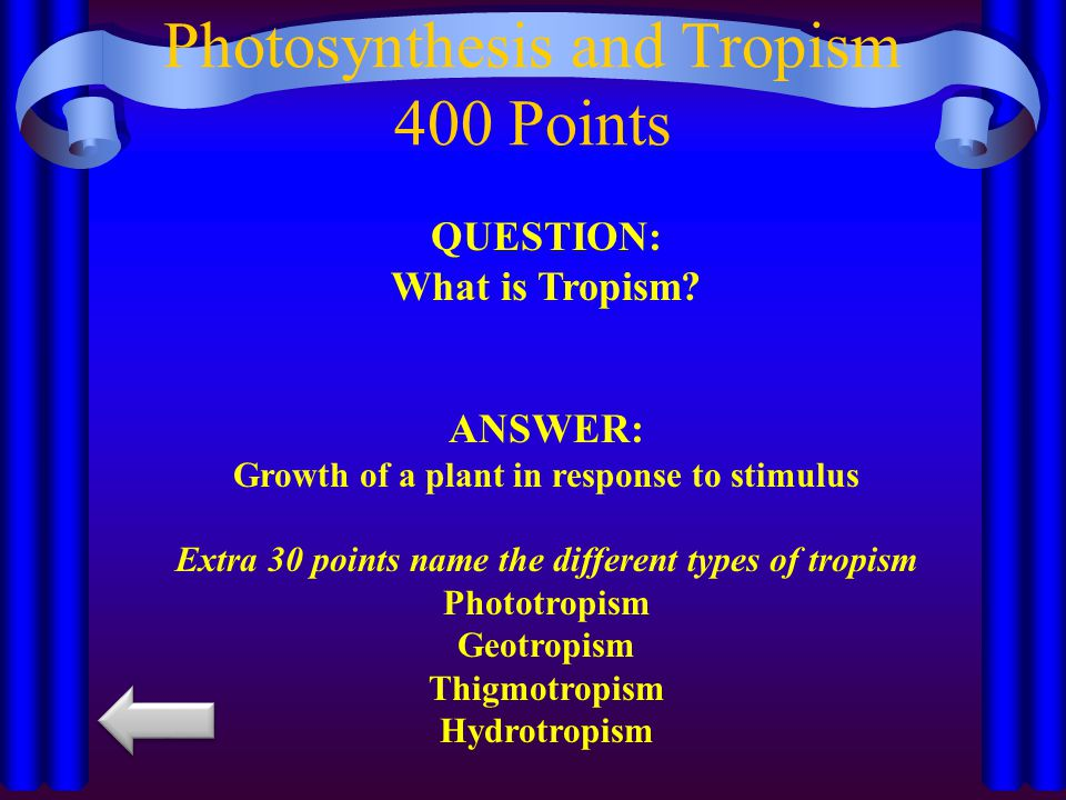 Photosynthesis and Tropism 400 Points