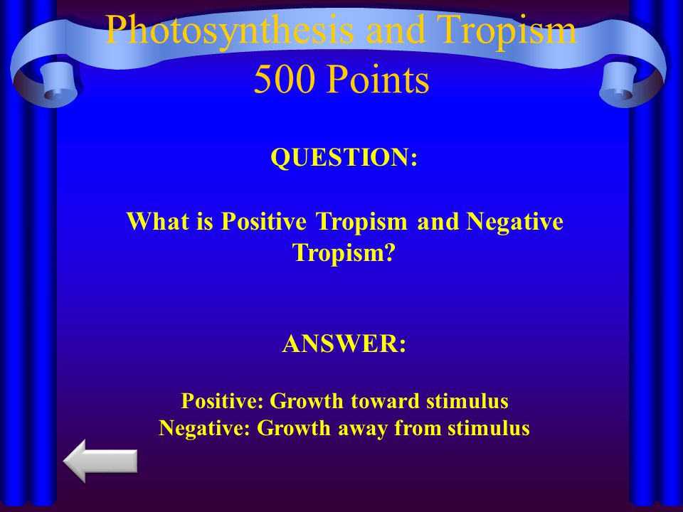 Photosynthesis and Tropism 500 Points