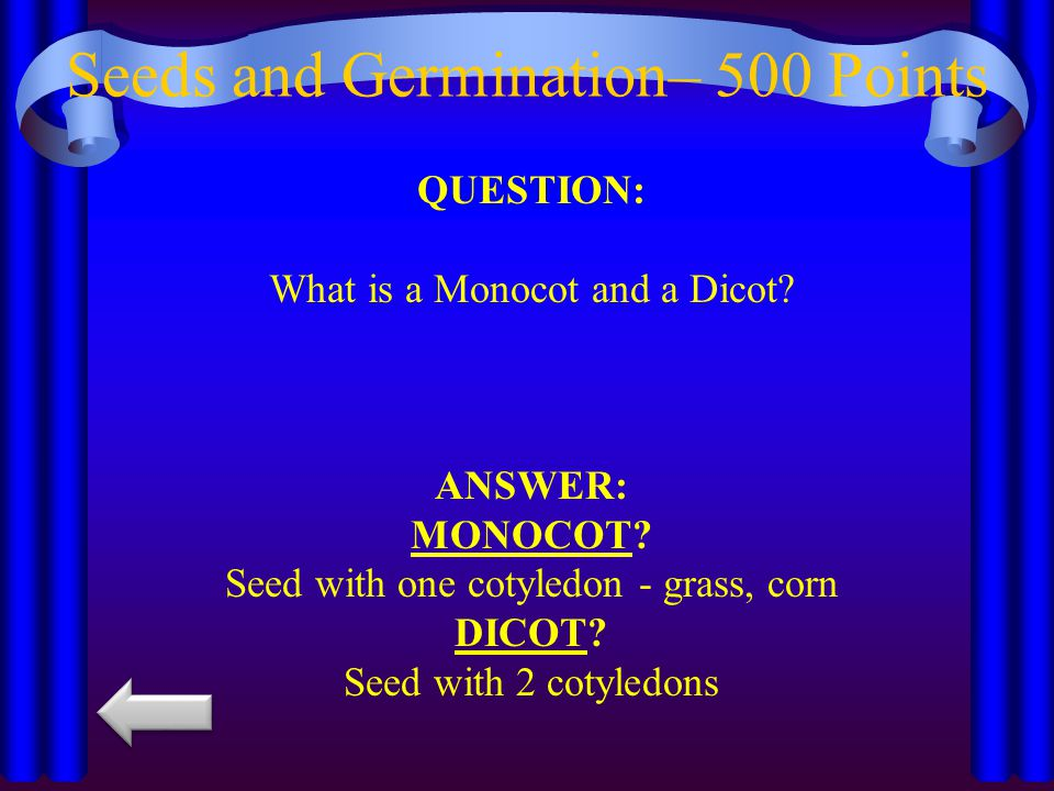Seeds and Germination– 500 Points