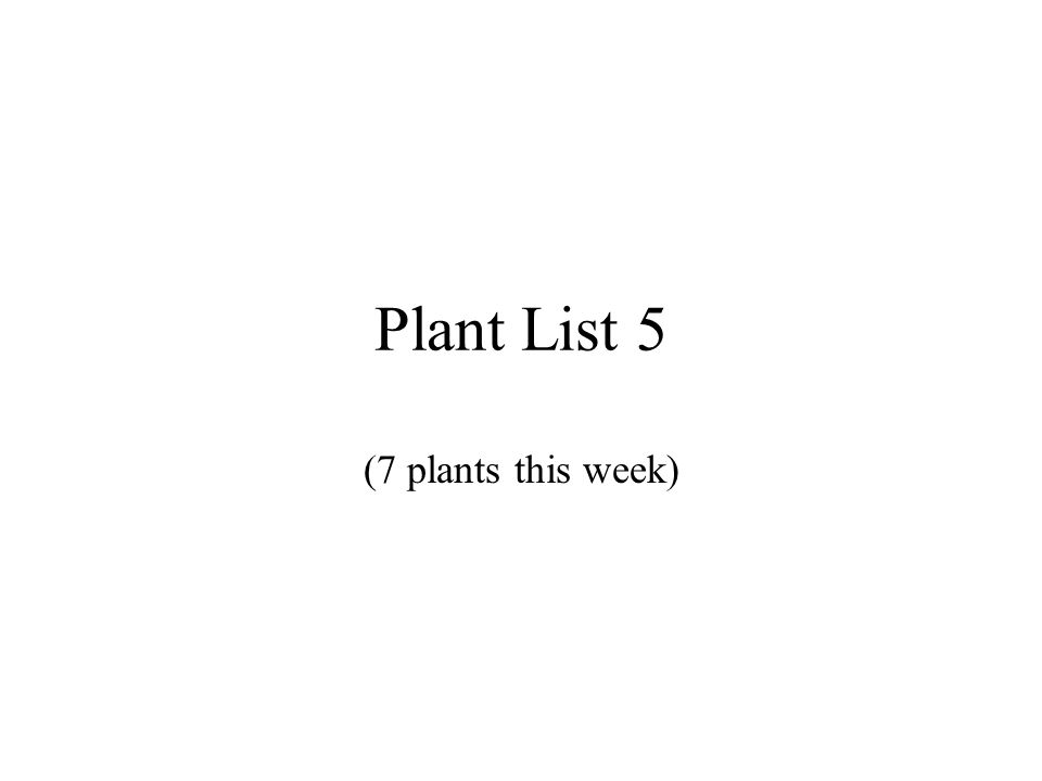 Plant List 5 (7 plants this week)