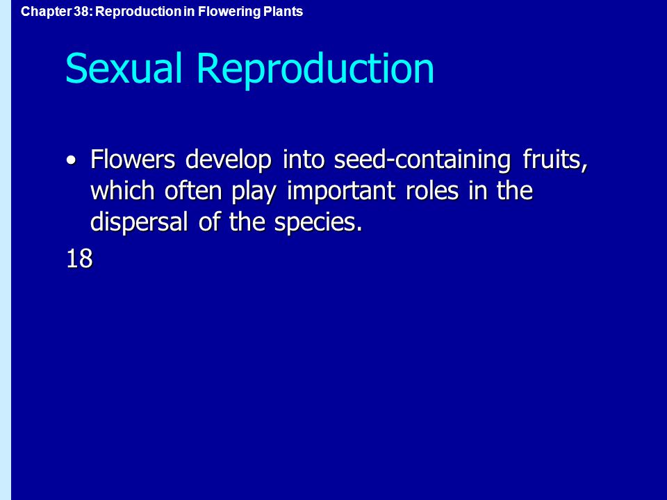 Sexual Reproduction Flowers develop into seed-containing fruits, which often play important roles in the dispersal of the species.