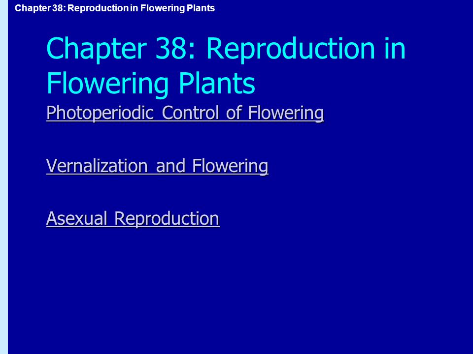 Chapter 38: Reproduction in Flowering Plants