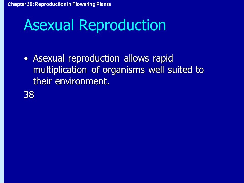 Asexual Reproduction Asexual reproduction allows rapid multiplication of organisms well suited to their environment.