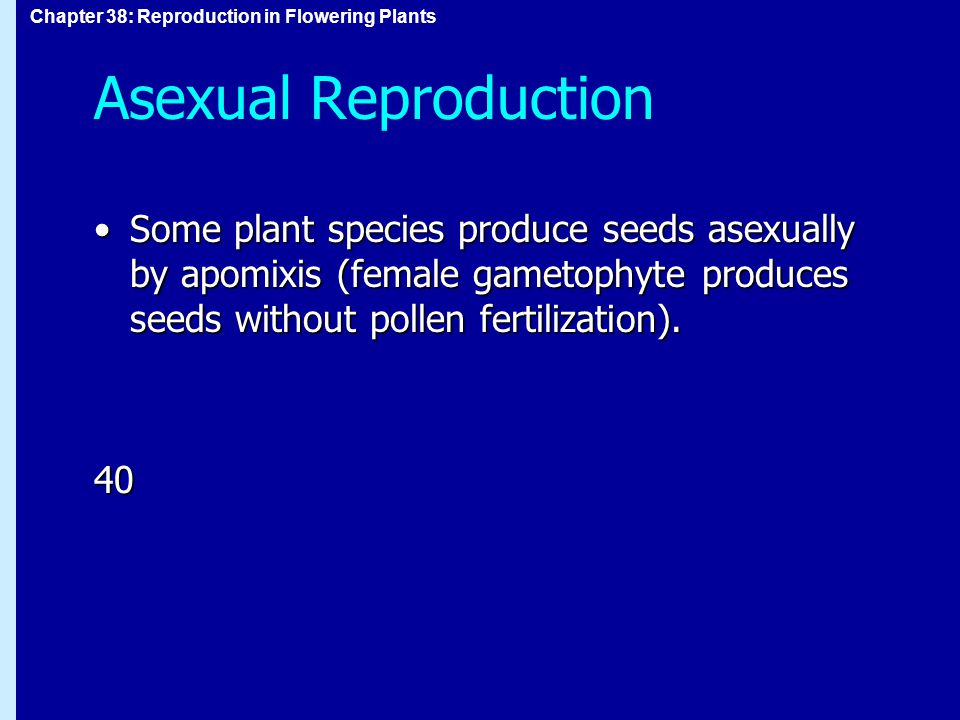 Asexual Reproduction Some plant species produce seeds asexually by apomixis (female gametophyte produces seeds without pollen fertilization).
