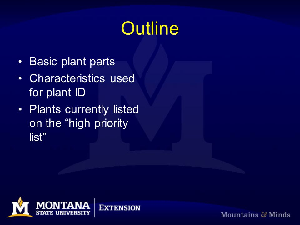 Outline Basic plant parts Characteristics used for plant ID