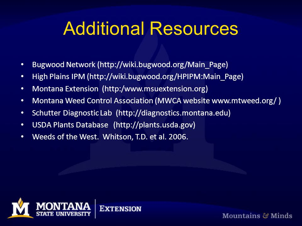 Additional Resources Bugwood Network (http://wiki.bugwood.org/Main_Page) High Plains IPM (http://wiki.bugwood.org/HPIPM:Main_Page)