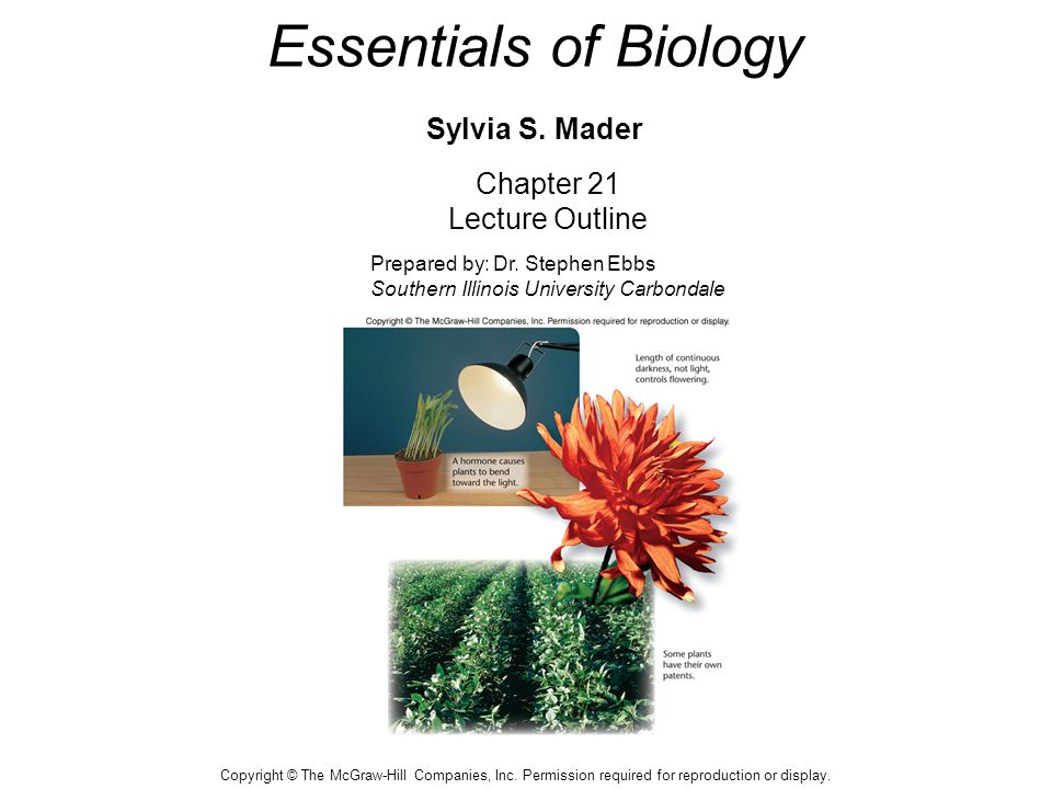 Essentials of Biology Sylvia S. Mader