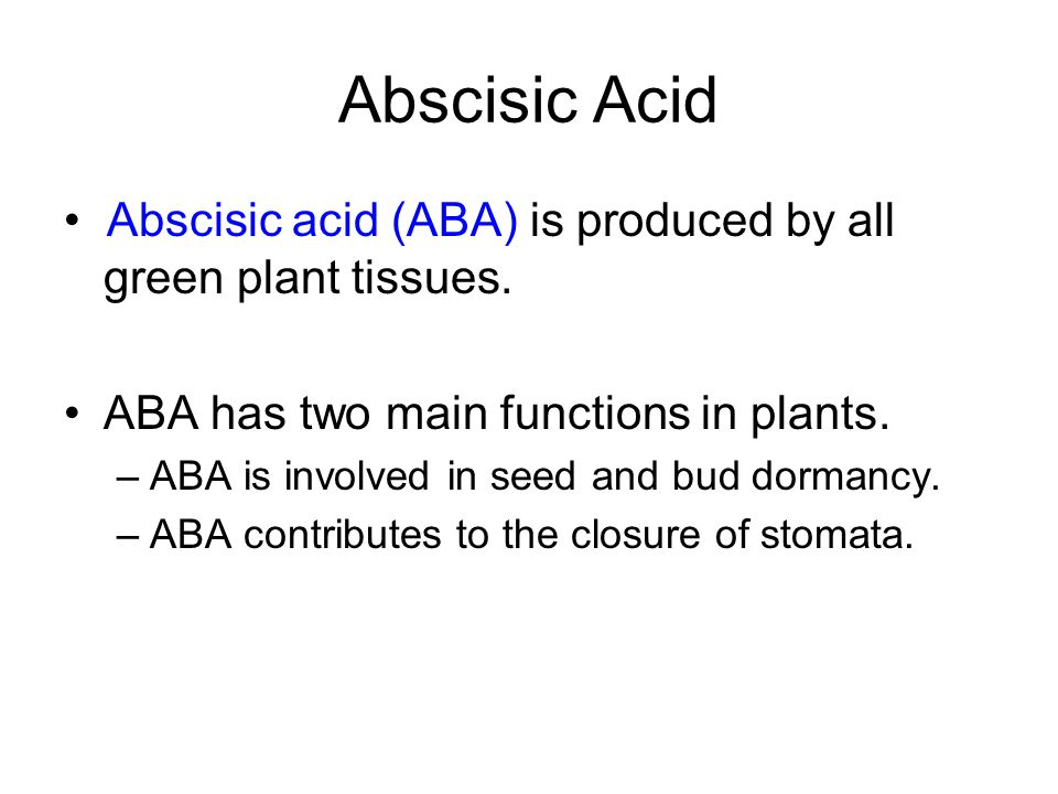 Abscisic Acid • Abscisic acid (ABA) is produced by all green plant tissues. ABA has two main functions in plants.