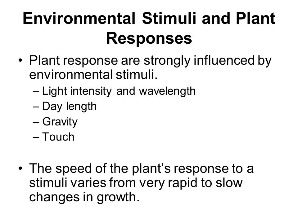 Environmental Stimuli and Plant Responses