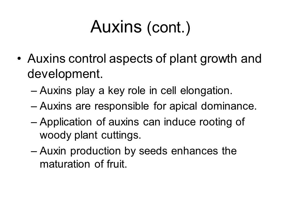 Auxins (cont.) Auxins control aspects of plant growth and development.