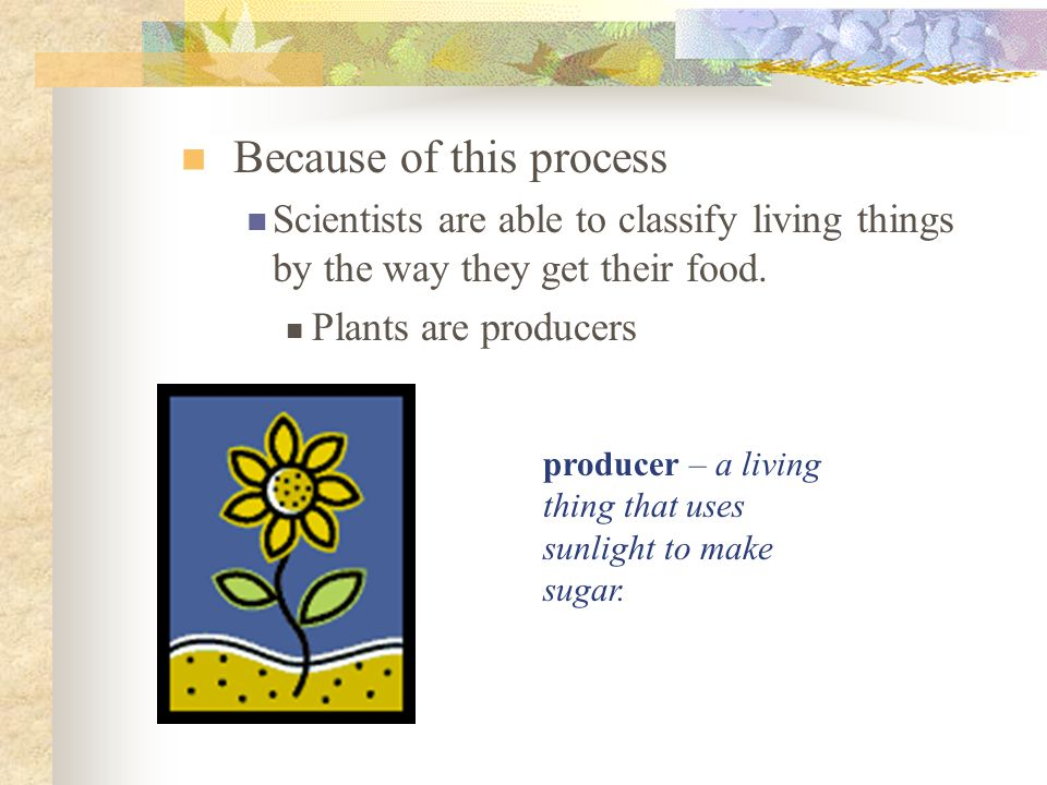 Because of this process