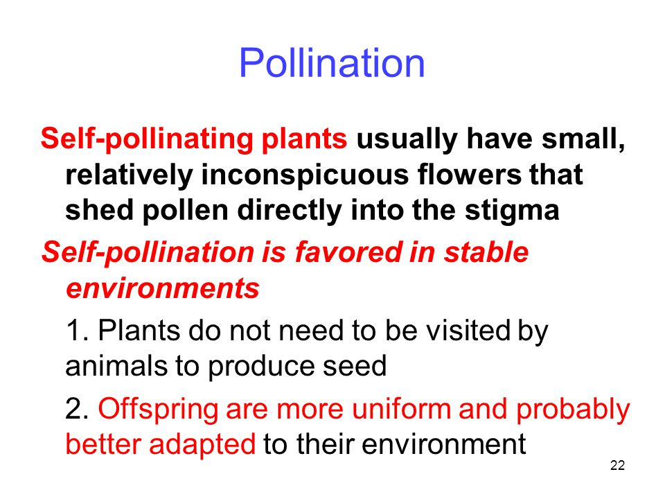 Pollination Self-pollinating plants usually have small, relatively inconspicuous flowers that shed pollen directly into the stigma.