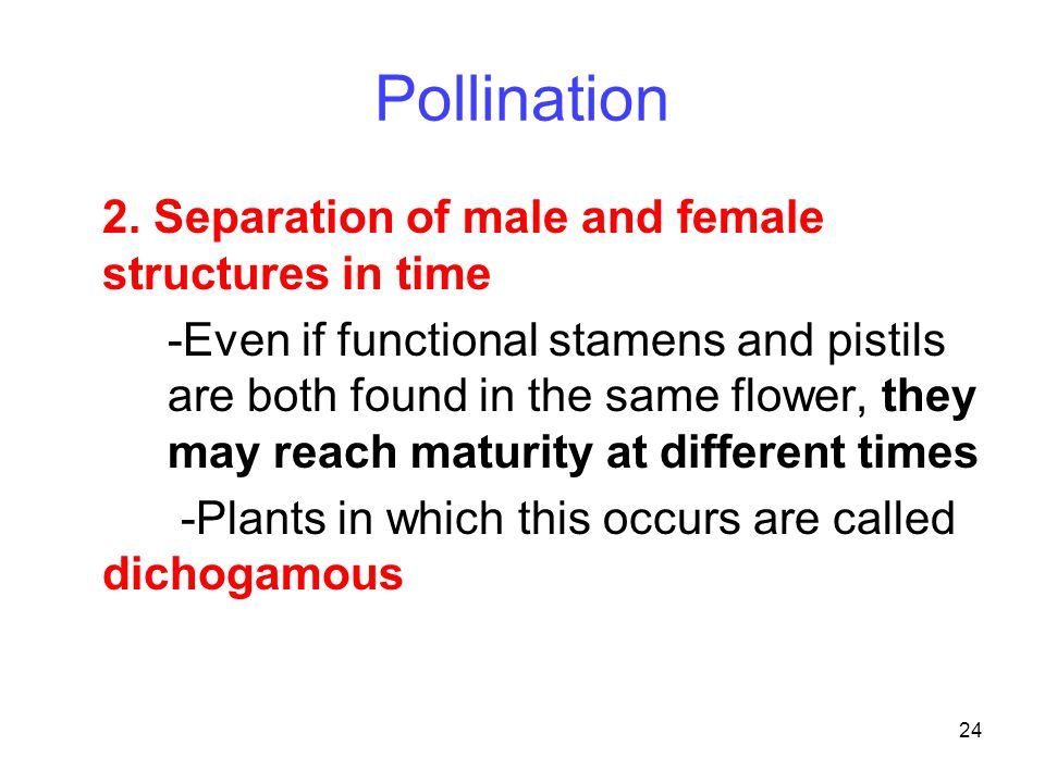 Pollination 2. Separation of male and female structures in time