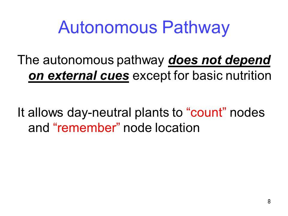 Autonomous Pathway The autonomous pathway does not depend on external cues except for basic nutrition.
