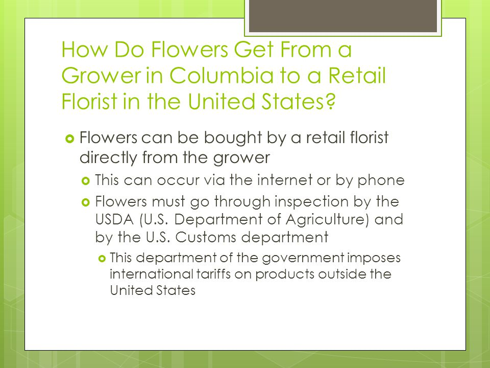 How Do Flowers Get From a Grower in Columbia to a Retail Florist in the United States