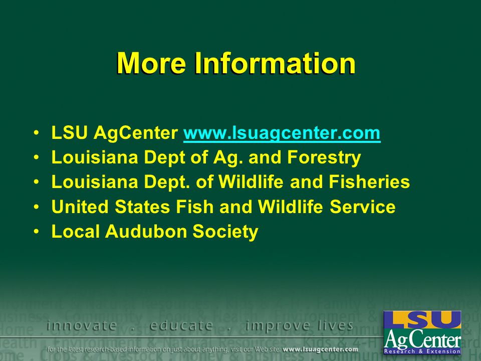 More Information LSU AgCenter www.lsuagcenter.com