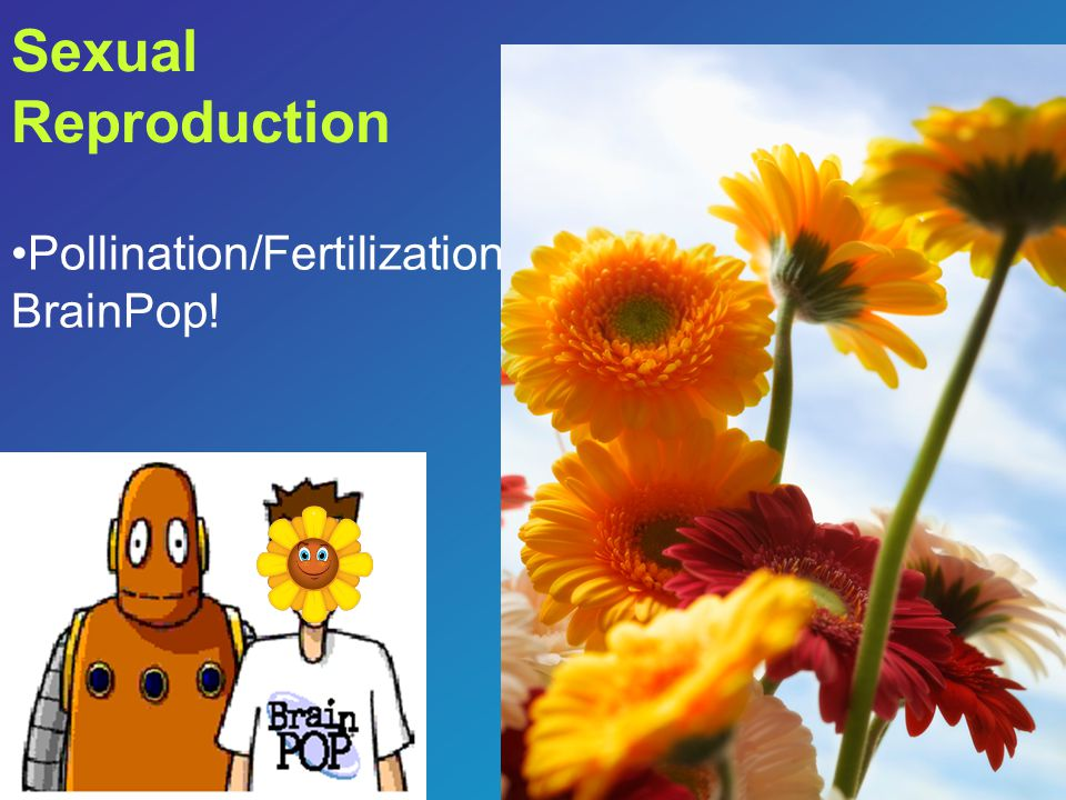 Sexual Reproduction Pollination/Fertilization BrainPop!